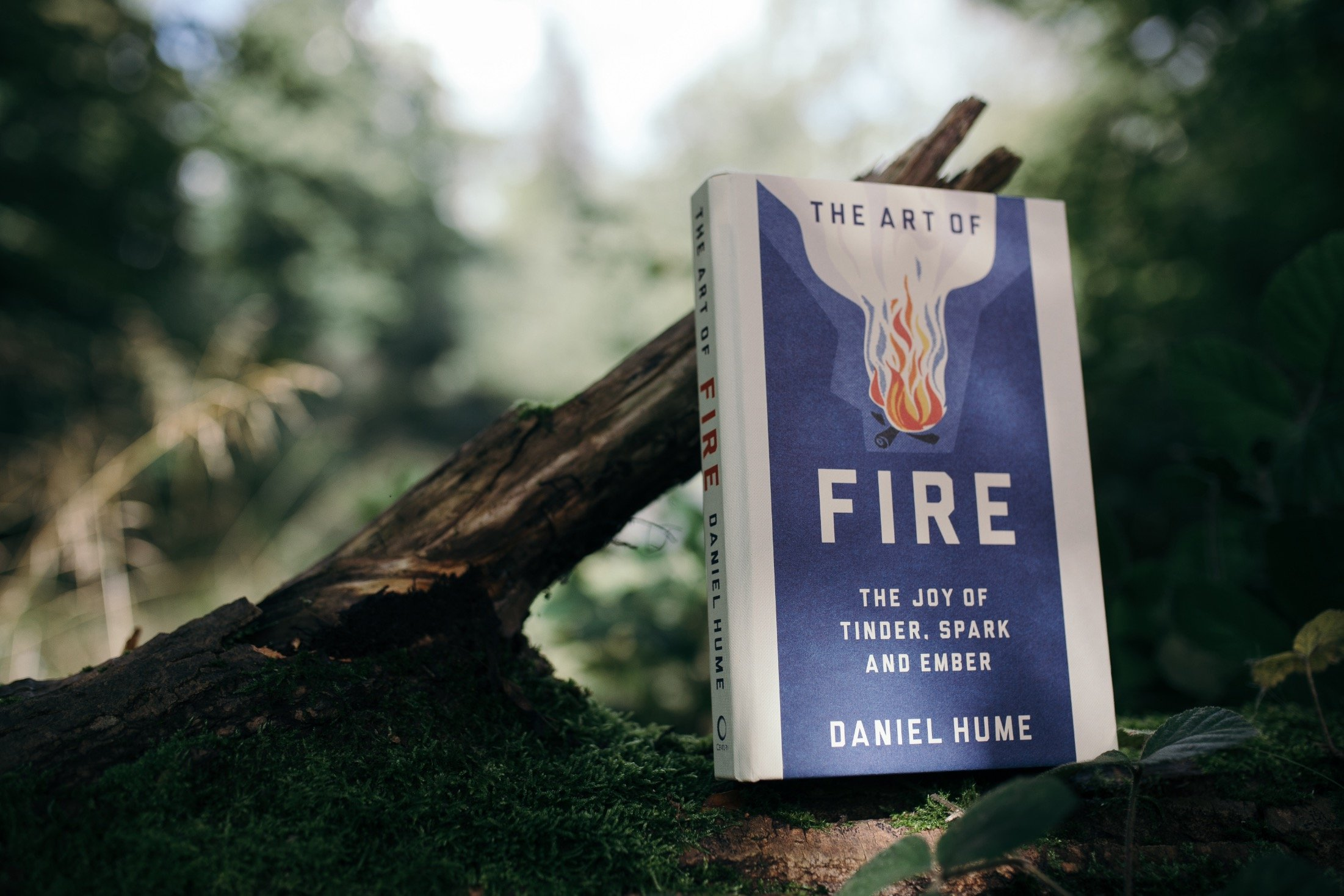 THE ART OF FIRE € 24,95